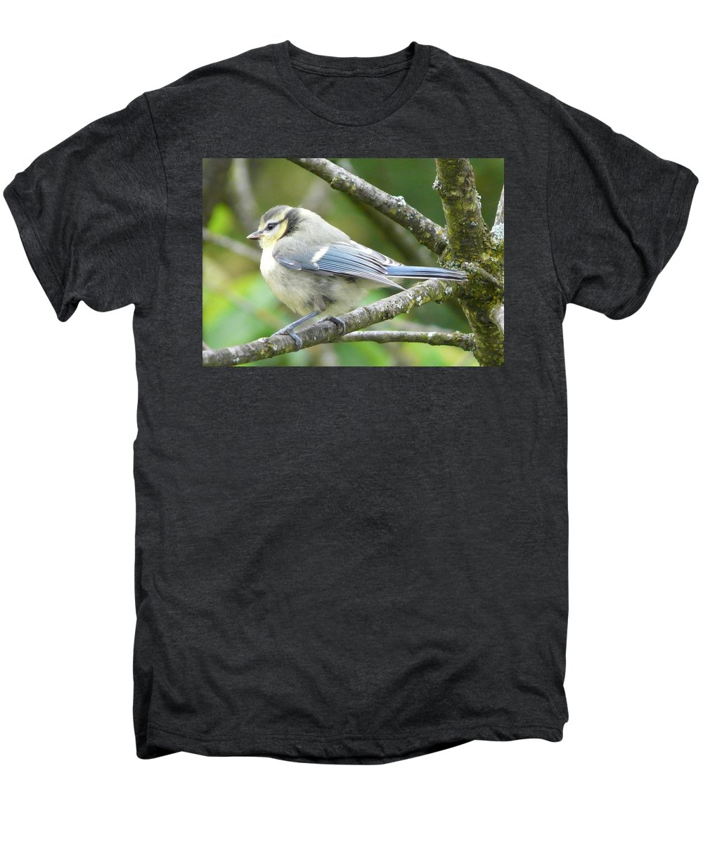 Bird Men's Premium T-Shirt featuring the photograph Blue Tit by Valerie Ornstein