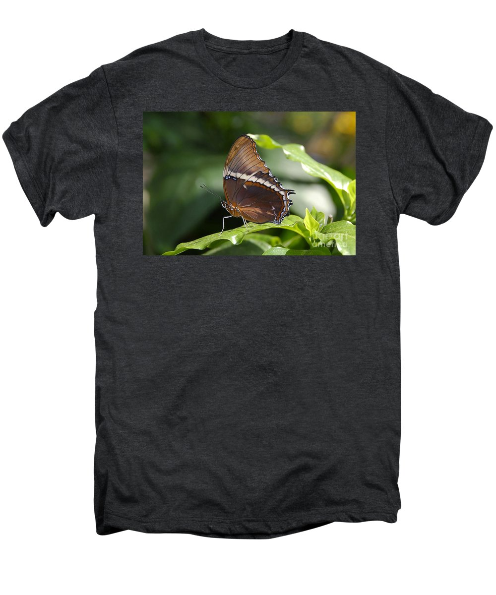 Butterfly Men's Premium T-Shirt featuring the photograph Brown Beauty by David Lee Thompson
