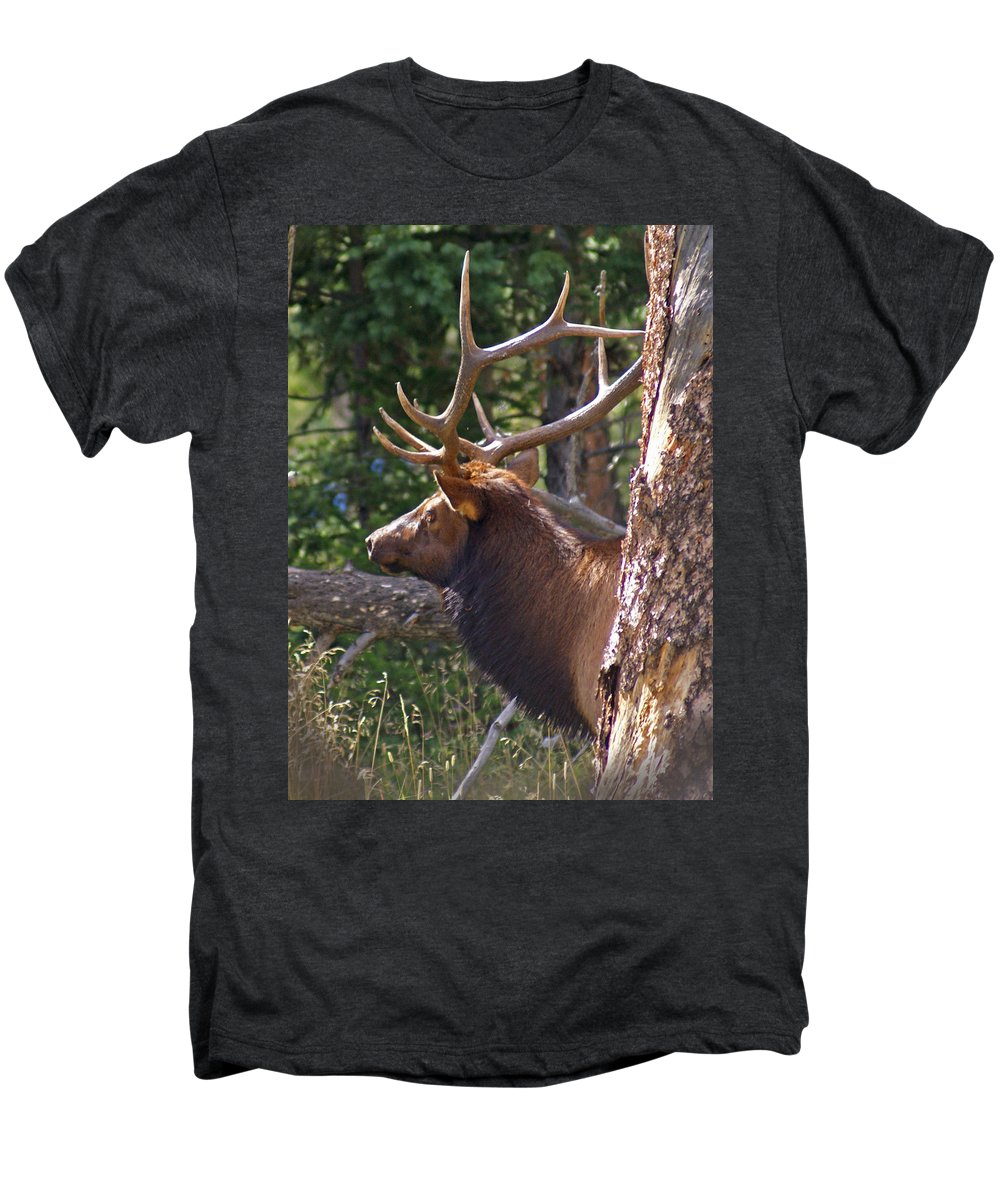 Elk Men's Premium T-Shirt featuring the photograph Bull Elk 2 by Heather Coen
