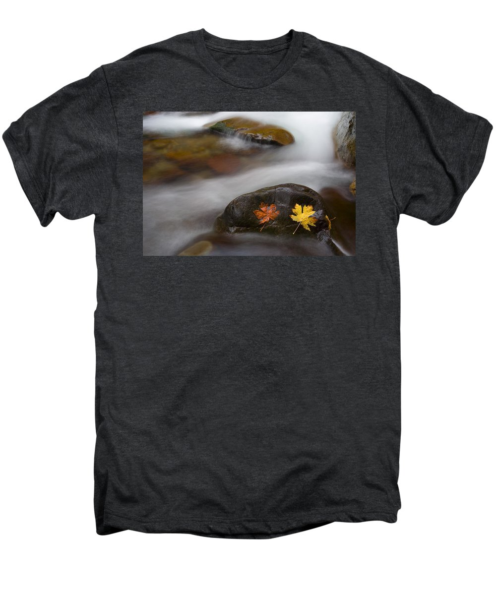 Leaves Men's Premium T-Shirt featuring the photograph Castaways by Mike Dawson