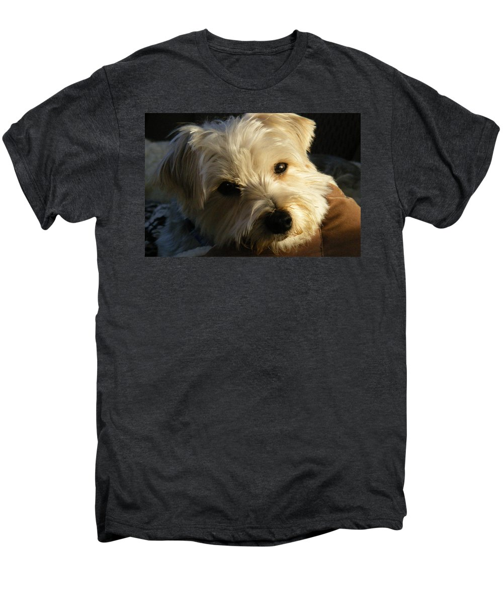 Dog Men's Premium T-Shirt featuring the photograph Charlie by Ed Smith