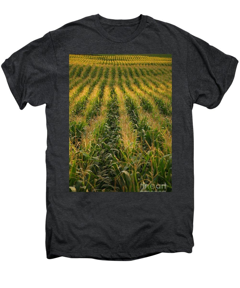 Acores Men's Premium T-Shirt featuring the photograph Corn Field by Gaspar Avila