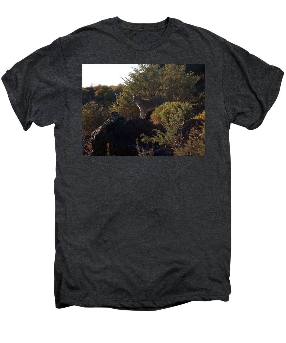 Coyote Men's Premium T-Shirt featuring the photograph Coyote At The Petrogyphs 2 by Tim McCarthy