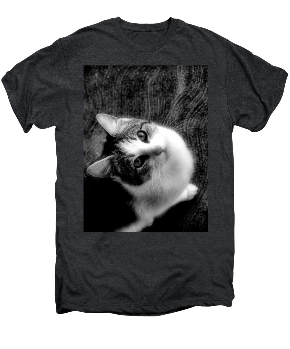 Cat Men's Premium T-Shirt featuring the photograph Don't Ever Leave by Gaby Swanson