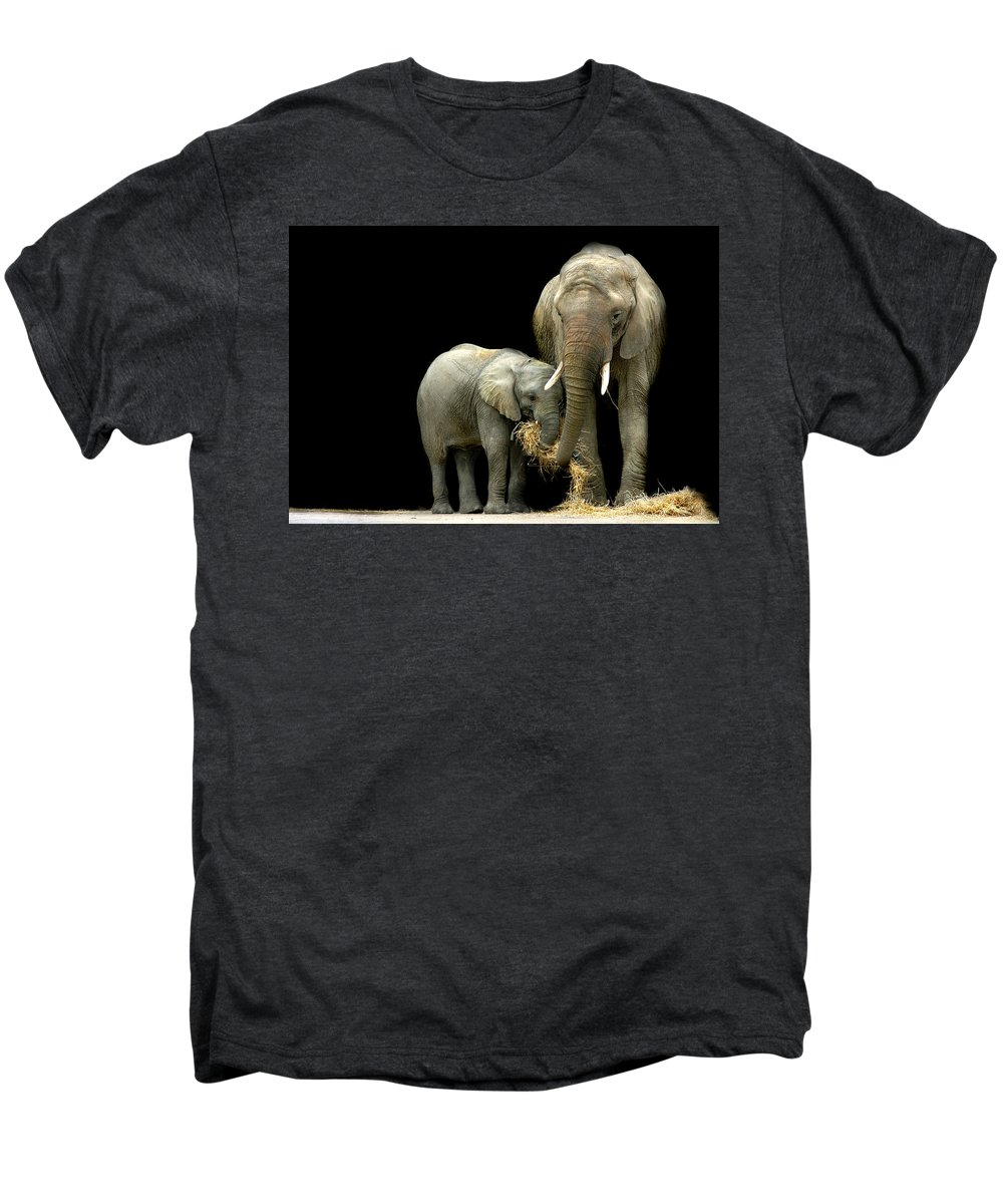 Elephant Men's Premium T-Shirt featuring the photograph Feeding Time by Stephie Butler