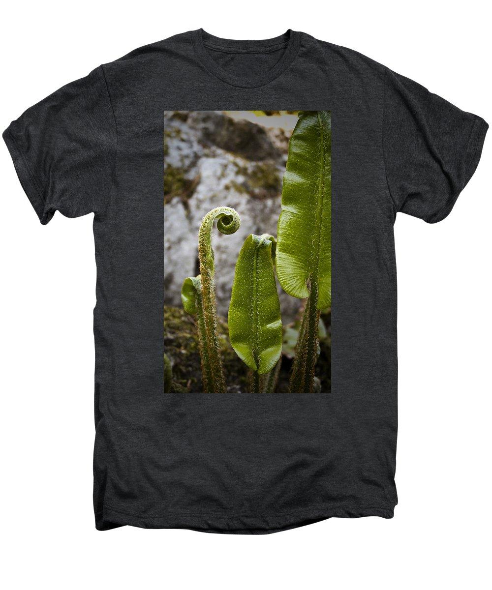 Irish Men's Premium T-Shirt featuring the photograph Fern Study At Blarney Castle Ireland by Teresa Mucha