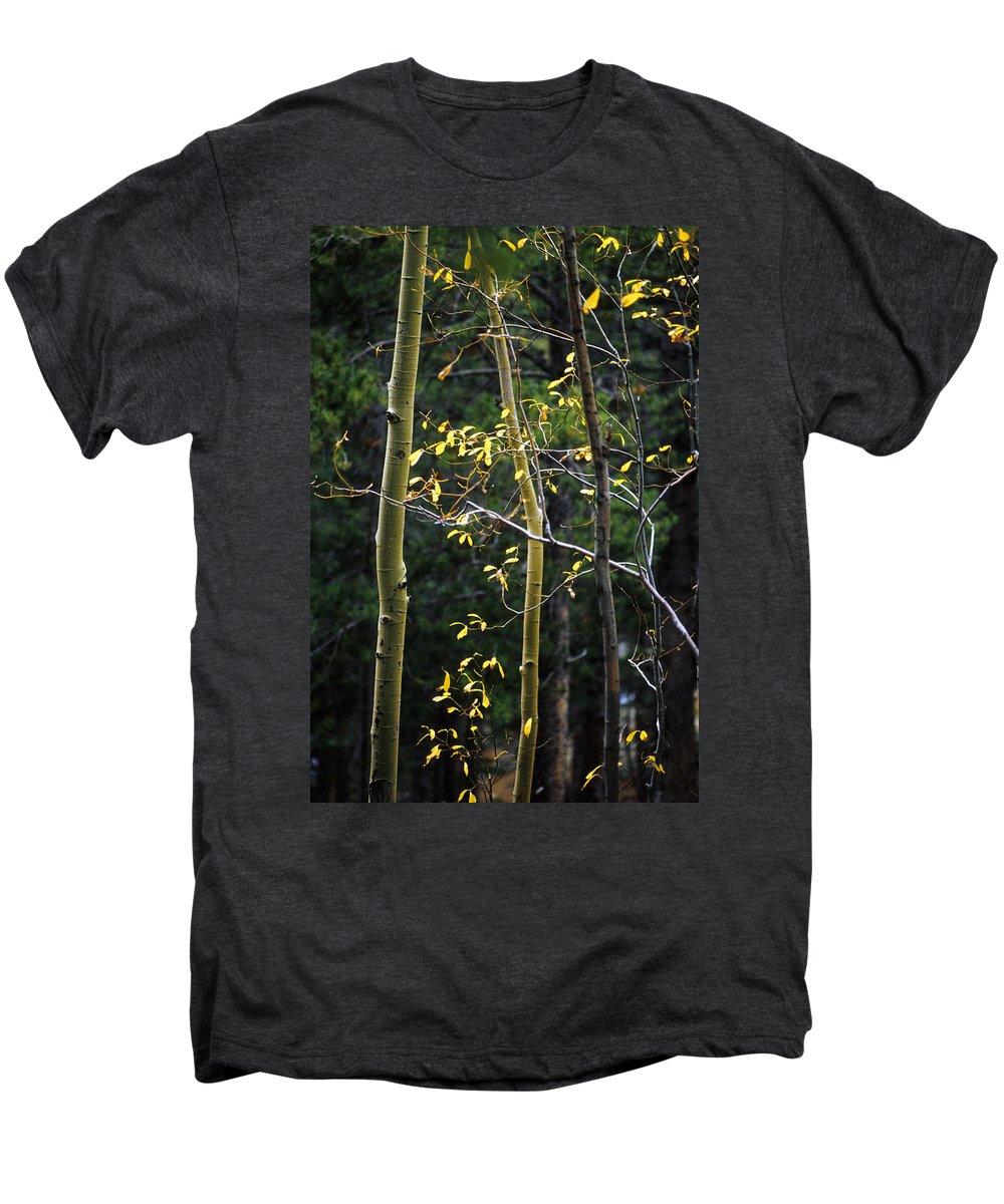 Aspen Men's Premium T-Shirt featuring the photograph Late Aspen by Jerry McElroy