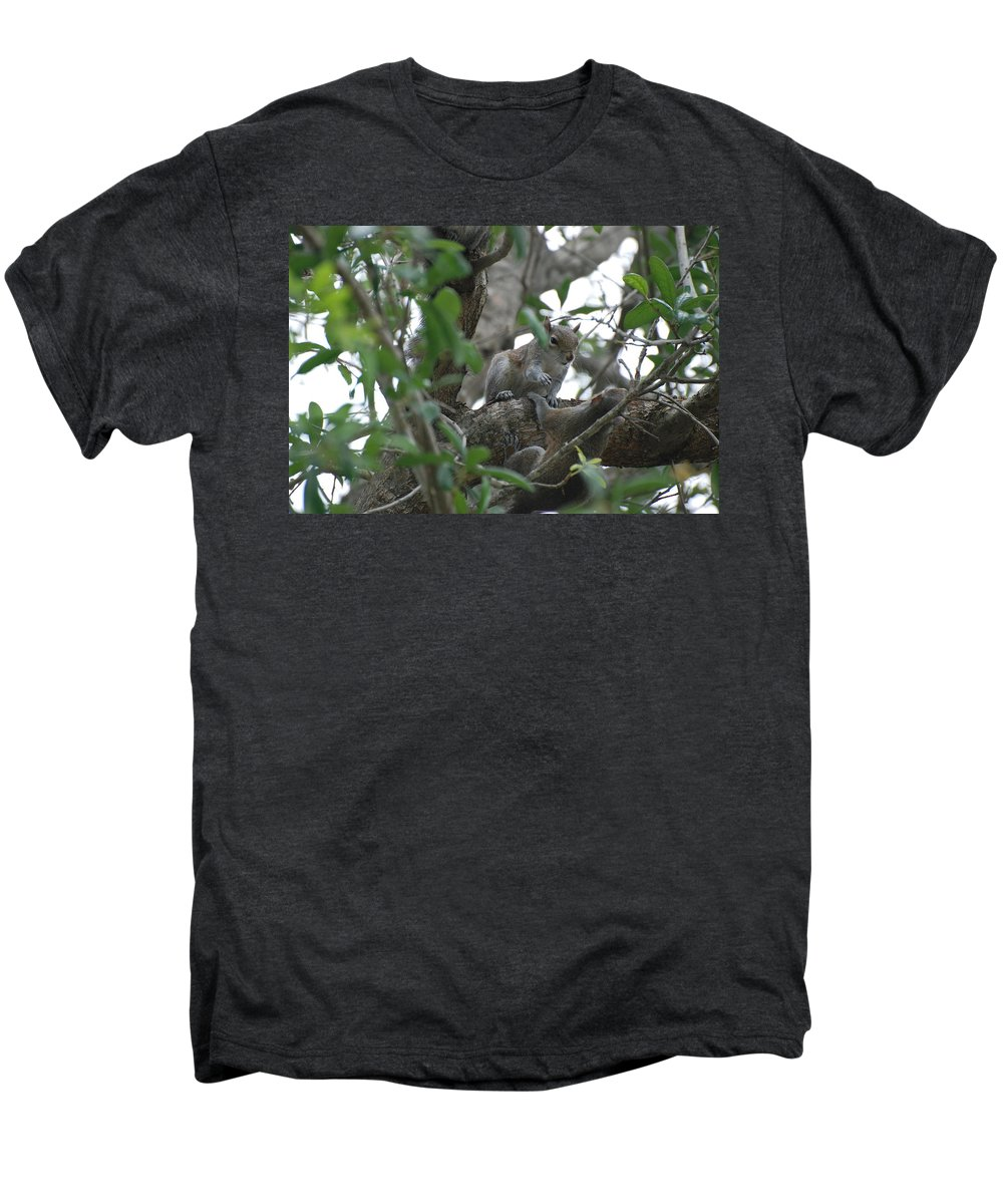 Squirrel Men's Premium T-Shirt featuring the photograph Lending A Helping Hand by Rob Hans