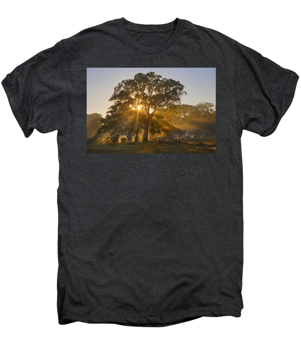Tree Men's Premium T-Shirt featuring the photograph Let There Be Light by Mike Dawson