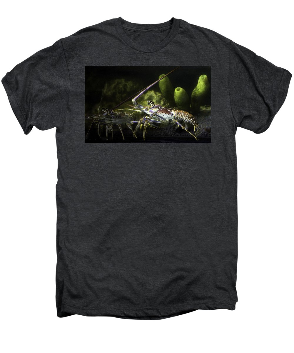 Lobster Men's Premium T-Shirt featuring the photograph Lobster In Love by Marilyn Hunt