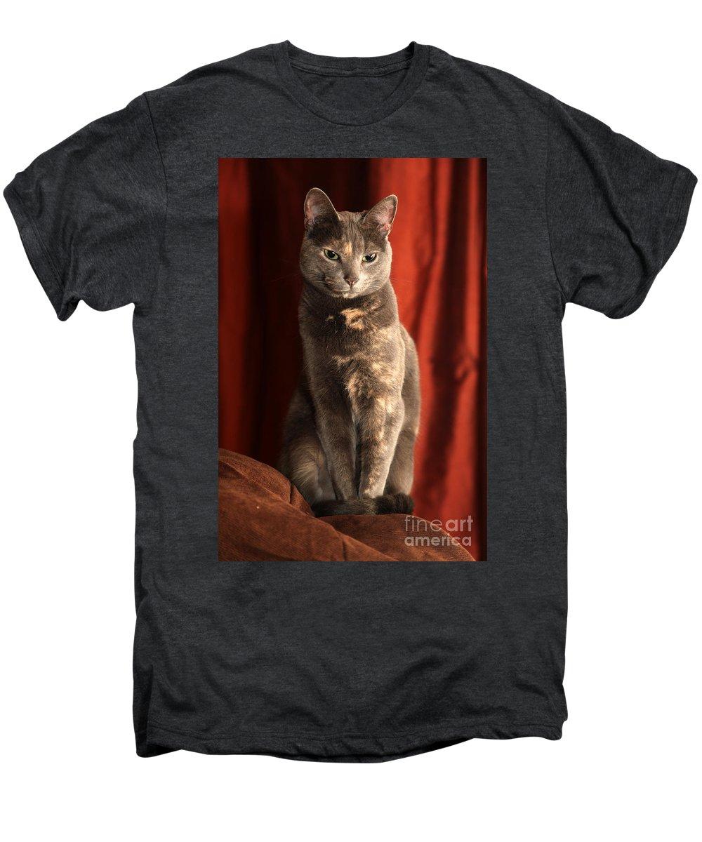 Cat Men's Premium T-Shirt featuring the photograph Mollie by Amanda Barcon