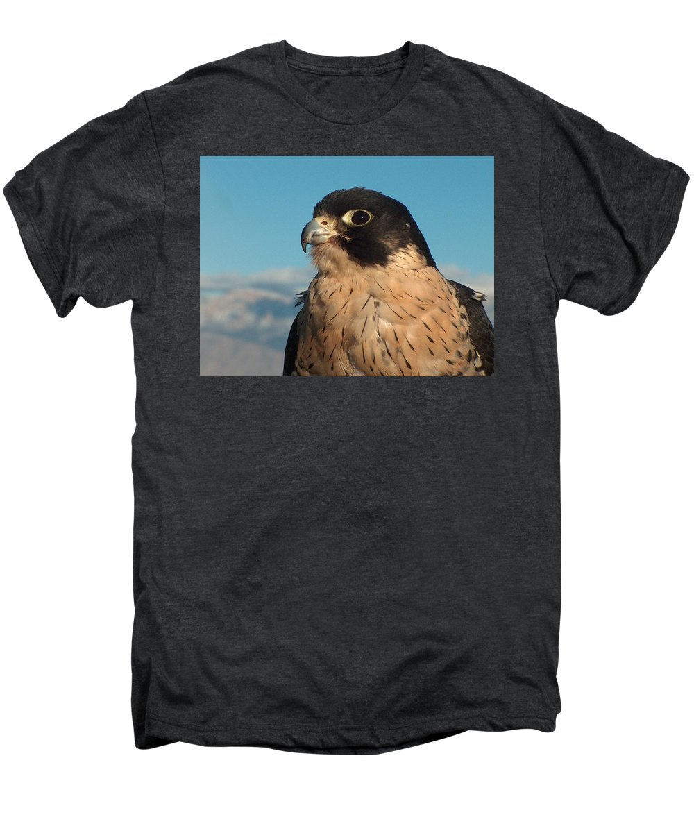 Peregrine Falcon Men's Premium T-Shirt featuring the photograph Peregrine Falcon by Tim McCarthy