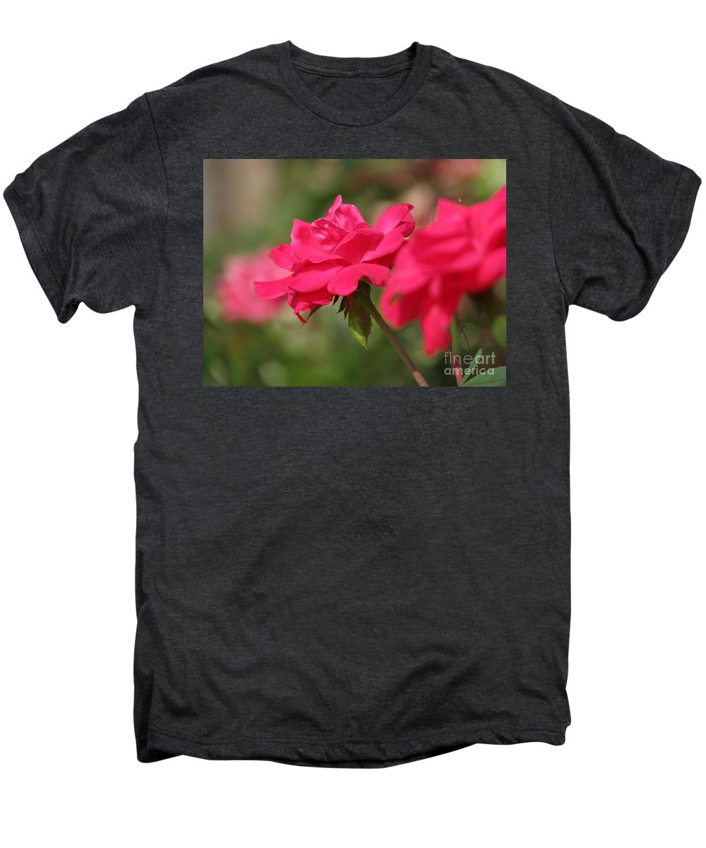 Rose Men's Premium T-Shirt featuring the photograph Roses by Amanda Barcon