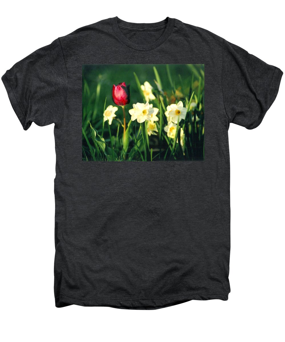Tulips Men's Premium T-Shirt featuring the photograph Royal Spring by Steve Karol