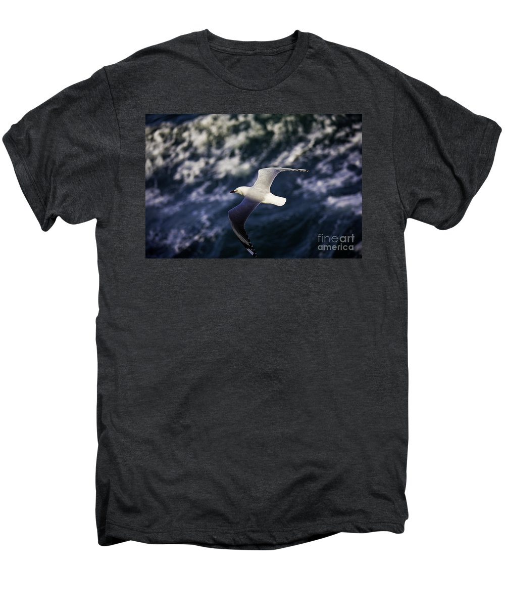 Seagull Men's Premium T-Shirt featuring the photograph Seagull In Wake by Avalon Fine Art Photography