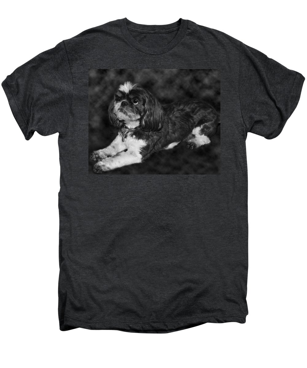 3scape Photos Men's Premium T-Shirt featuring the painting Shih Tzu by Adam Romanowicz