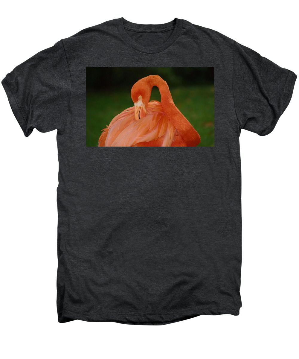 Flamingo Men's Premium T-Shirt featuring the photograph shy by Gaby Swanson