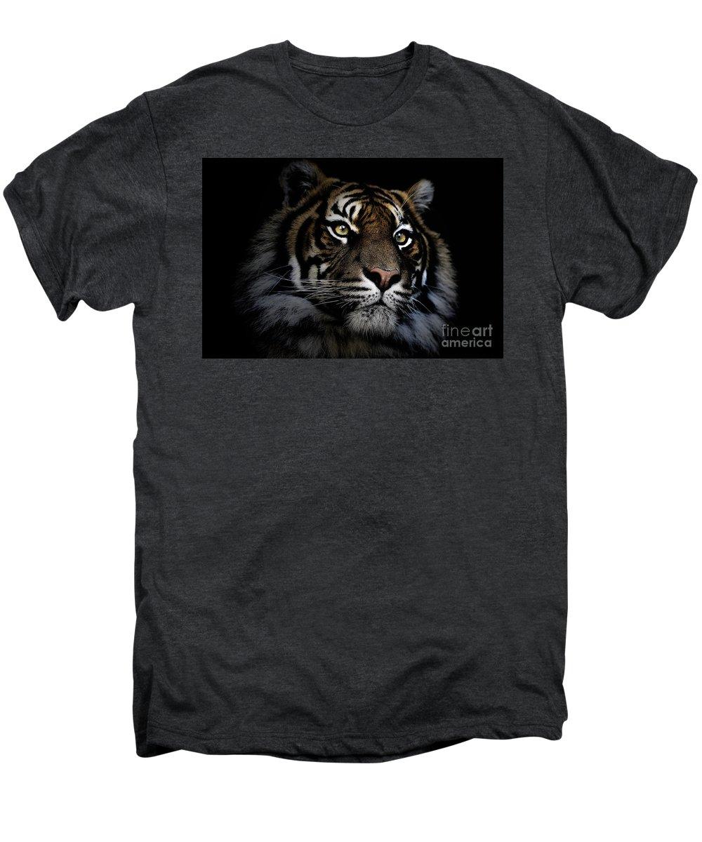 Sumatran Tiger Wildlife Endangered Men's Premium T-Shirt featuring the photograph Sumatran Tiger by Avalon Fine Art Photography