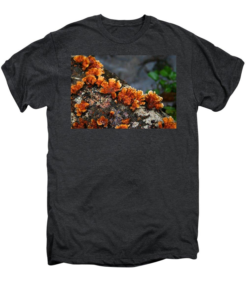 Bright Orange Nature Wet Forest Fungus Tree Wood Closeup Macro Men's Premium T-Shirt featuring the photograph Unexpected Brightness by Andrei Shliakhau