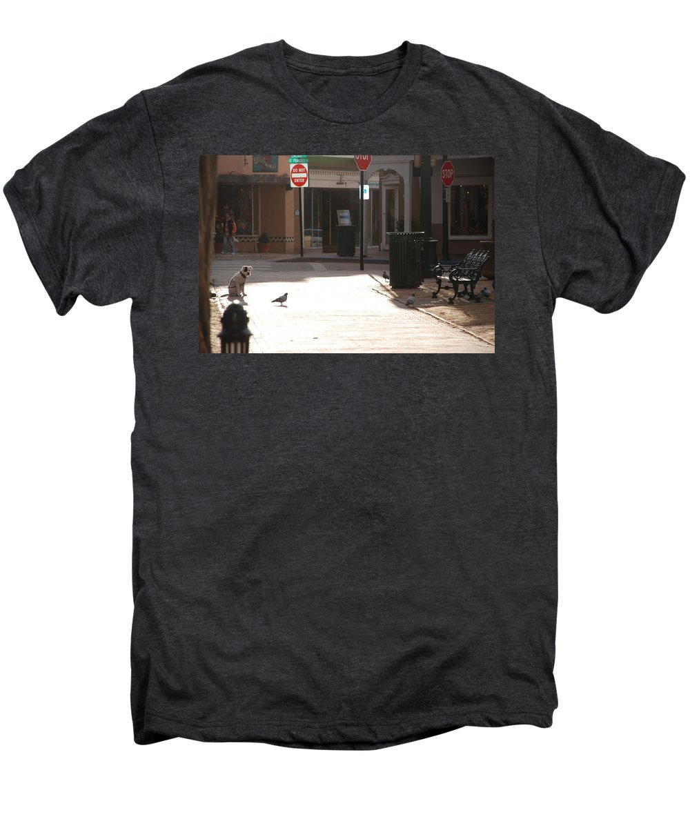 Dog Men's Premium T-Shirt featuring the photograph Why Question Mark by Rob Hans