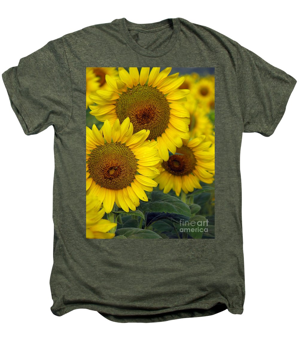 Sunflowers Men's Premium T-Shirt featuring the photograph Sunflower Series by Amanda Barcon