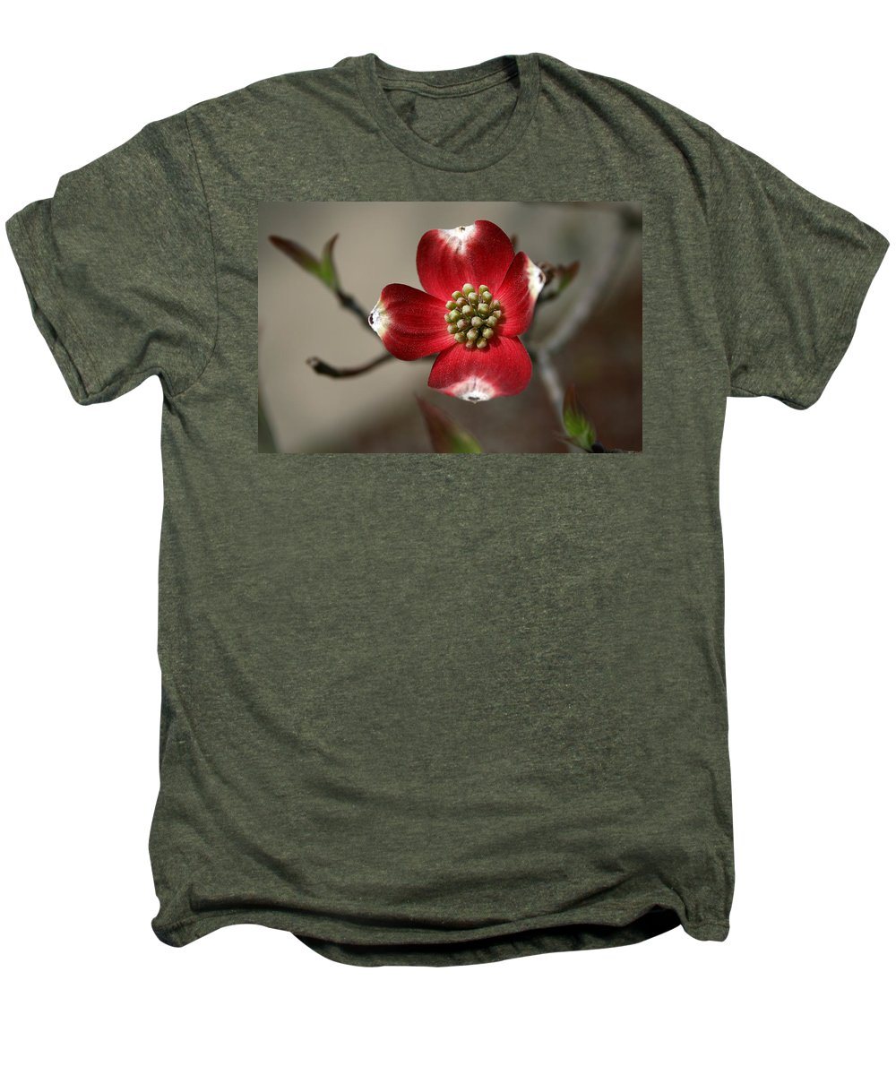Flower Men's Premium T-Shirt featuring the photograph Red Dogwood by Andrei Shliakhau