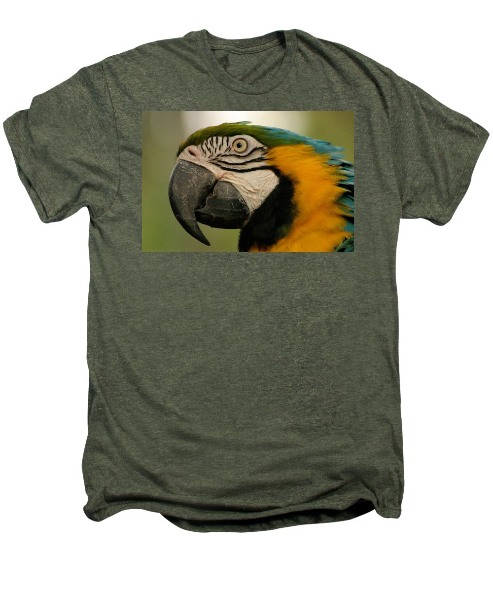Parrot Men's Premium T-Shirt featuring the photograph Blue Gold Macaw South America by Ralph A Ledergerber-Photography