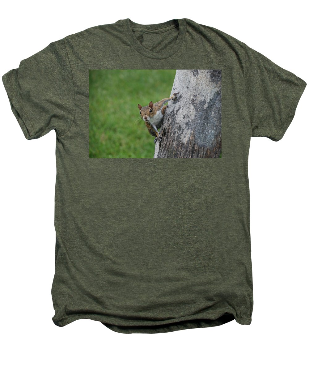 Squirrel Men's Premium T-Shirt featuring the photograph Hanging On by Rob Hans