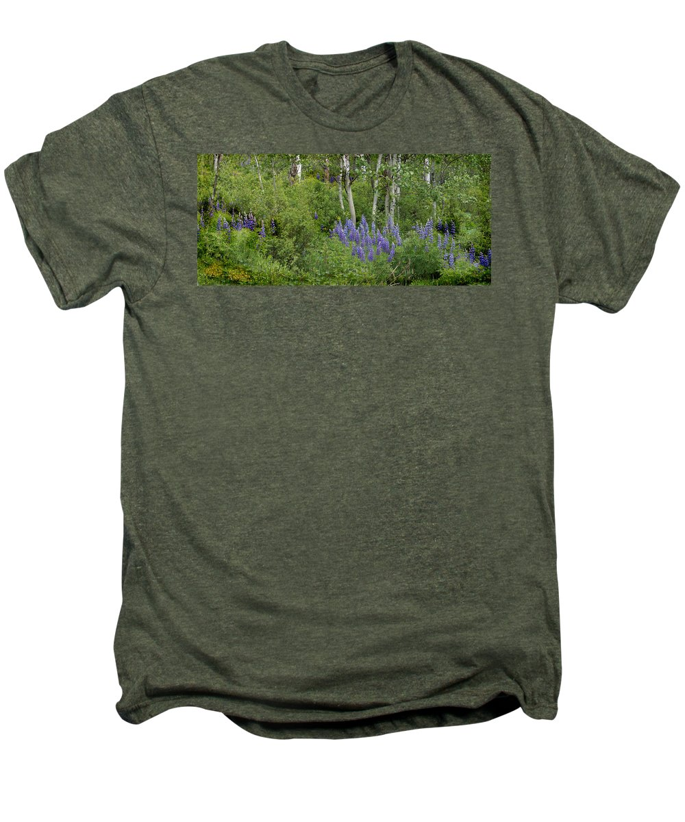 Aspen Men's Premium T-Shirt featuring the photograph Lupine And Aspens by Heather Coen