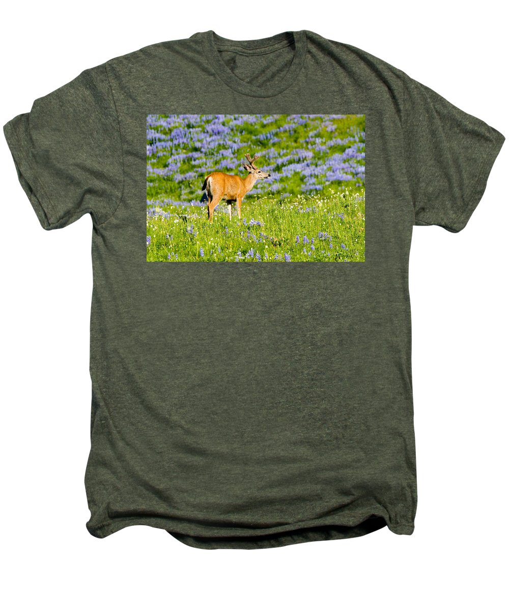 Deer Men's Premium T-Shirt featuring the photograph Velvet On Lupine by Mike Dawson