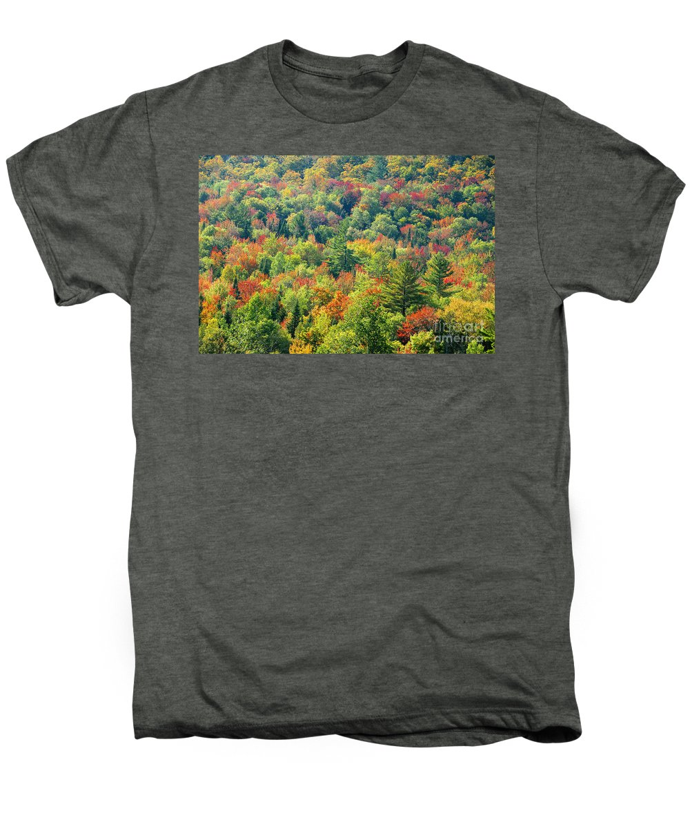 Adirondack Mountains Men's Premium T-Shirt featuring the photograph Fall Forest by David Lee Thompson