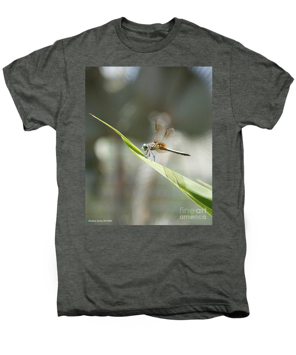 Dragonfly Men's Premium T-Shirt featuring the photograph Little Dragon by Shelley Jones