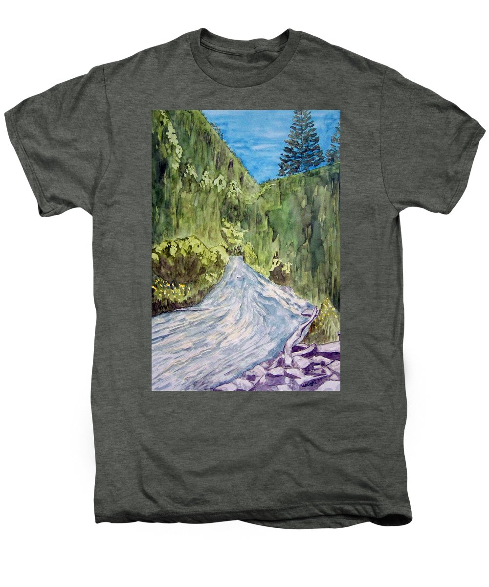 New Mexico Art Men's Premium T-Shirt featuring the painting New Mexico Canyon Impression by Larry Wright