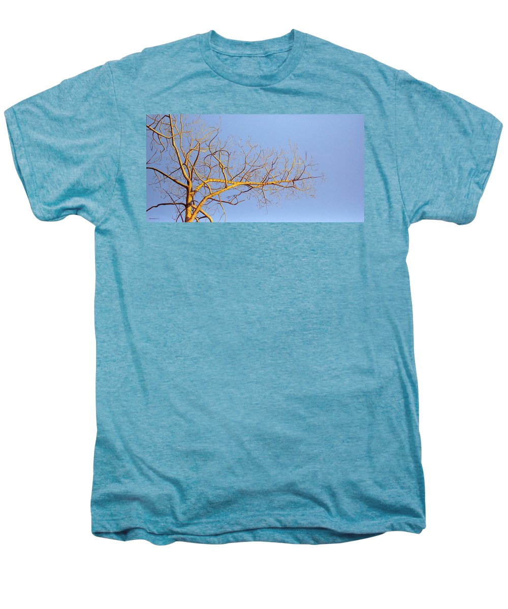 Aspen Painting Men's Premium T-Shirt featuring the painting Aspen In The Autumn Sun by Elaine Booth-Kallweit