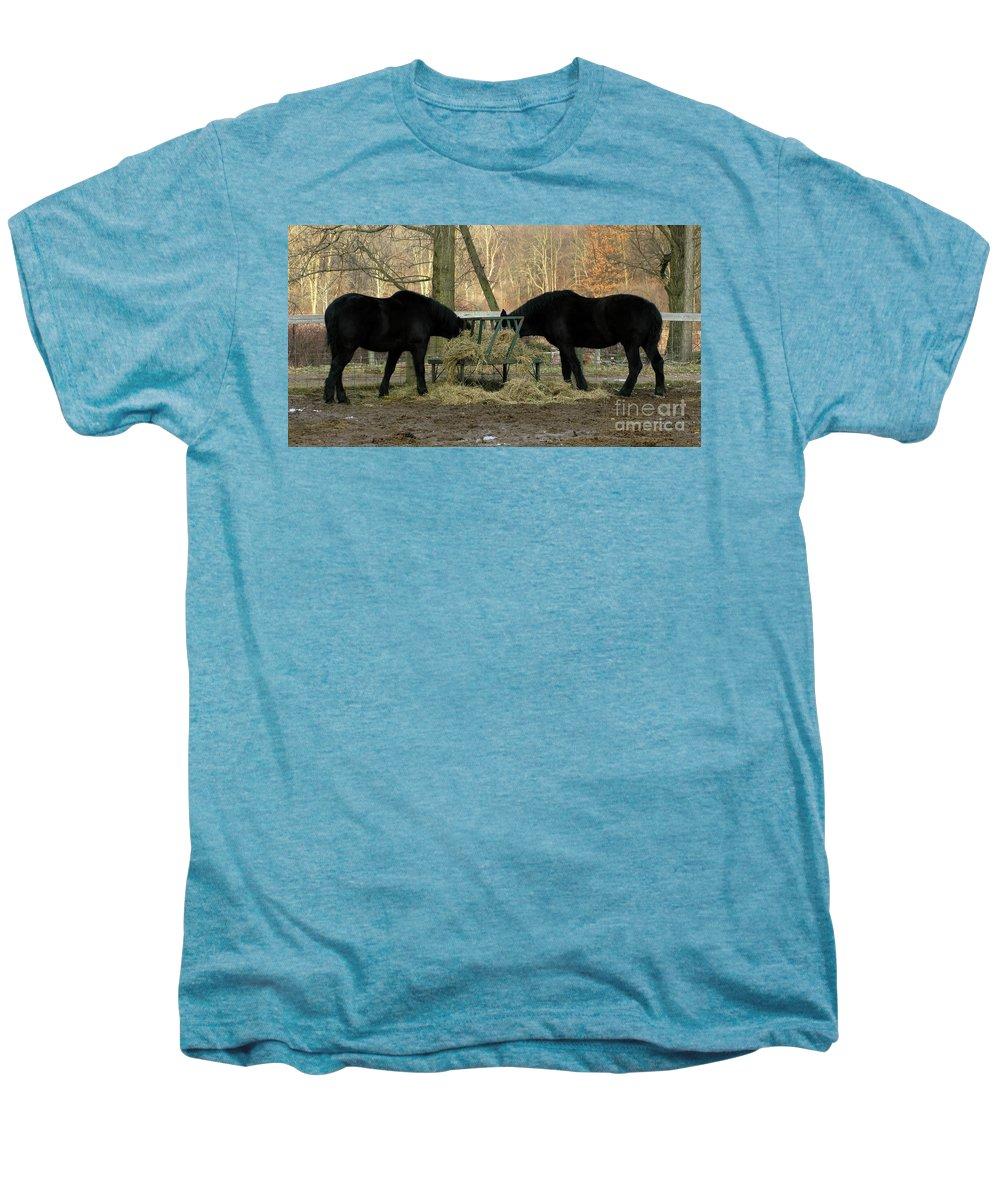 Horse Men's Premium T-Shirt featuring the photograph Barnyard Beauties by Ann Horn