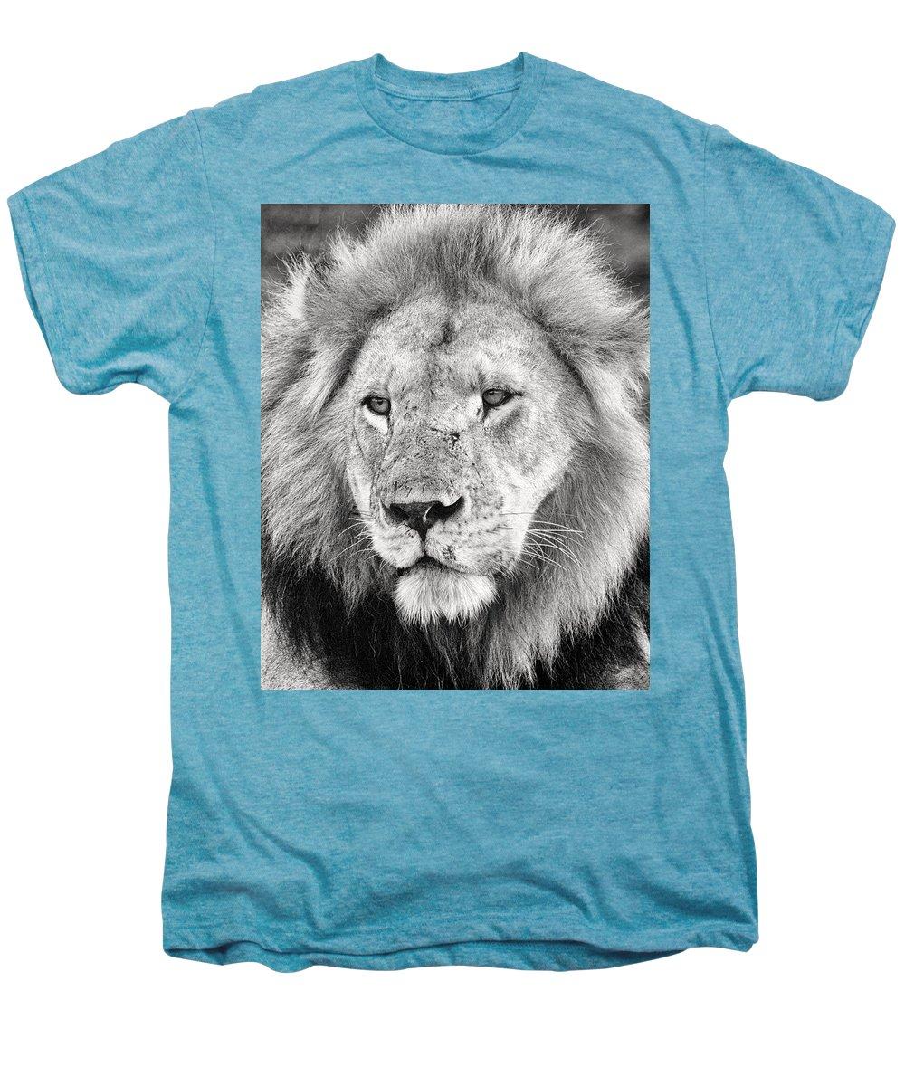3scape Men's Premium T-Shirt featuring the photograph Lion King by Adam Romanowicz