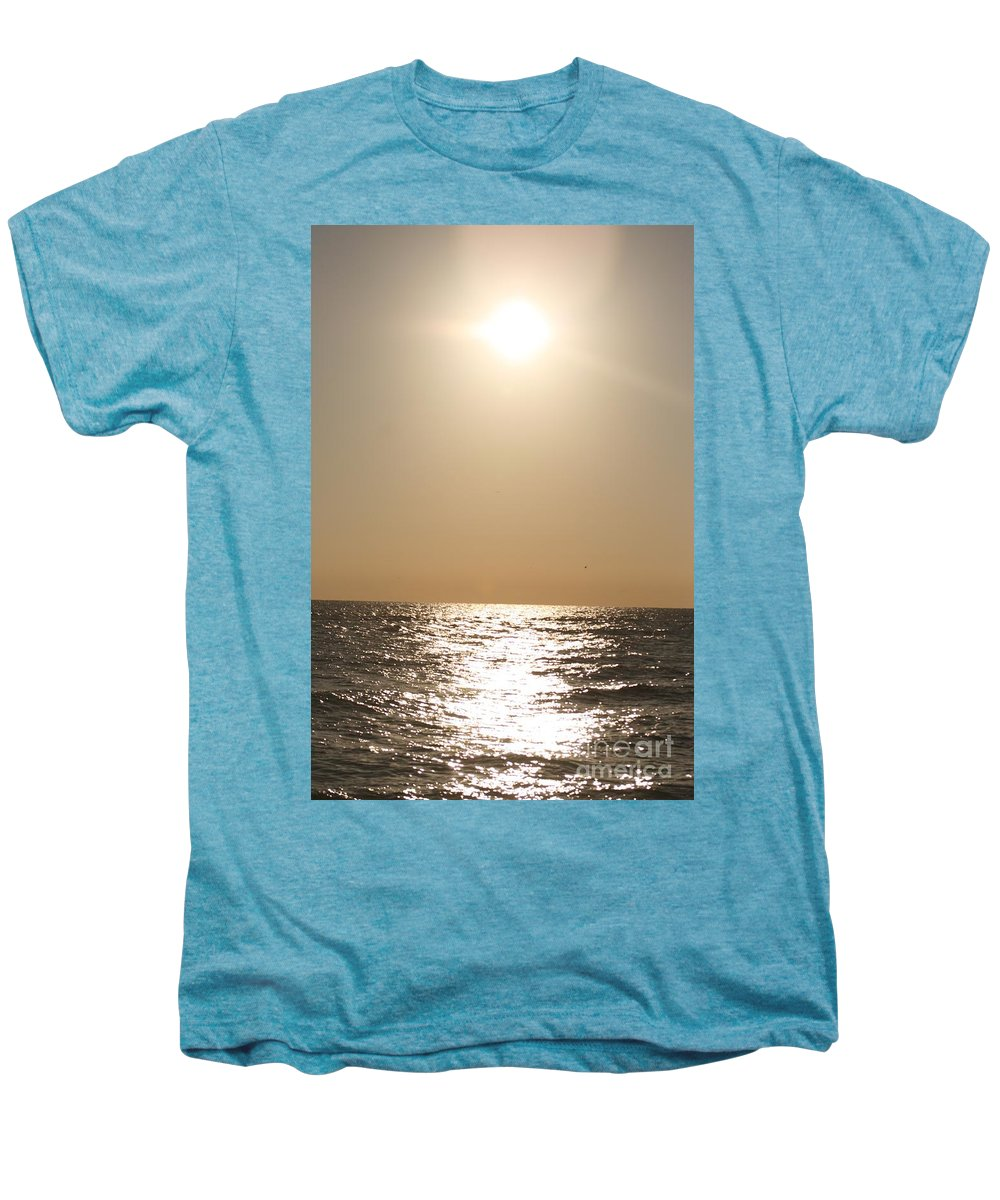 Silver Men's Premium T-Shirt featuring the photograph Silver And Gold by Nadine Rippelmeyer