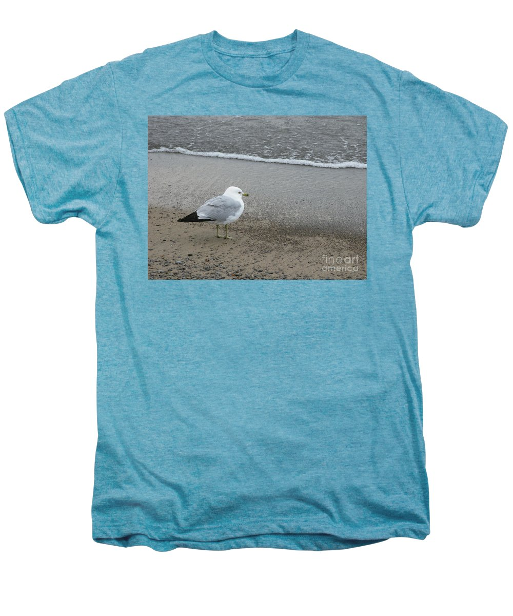 Ring-billed Gull Men's Premium T-Shirt featuring the photograph Ring-billed Gull by Ann Horn