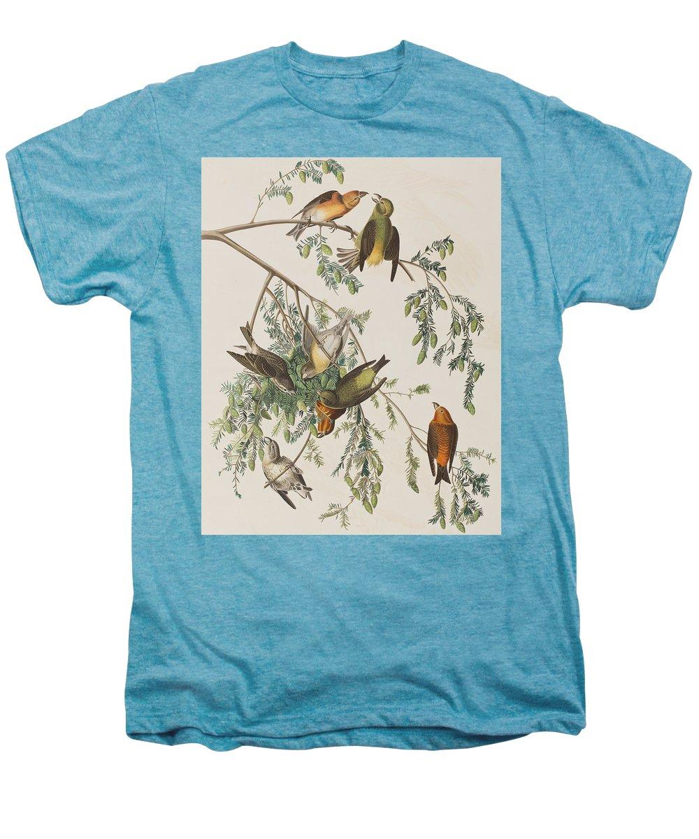 Crossbill Premium T-Shirts