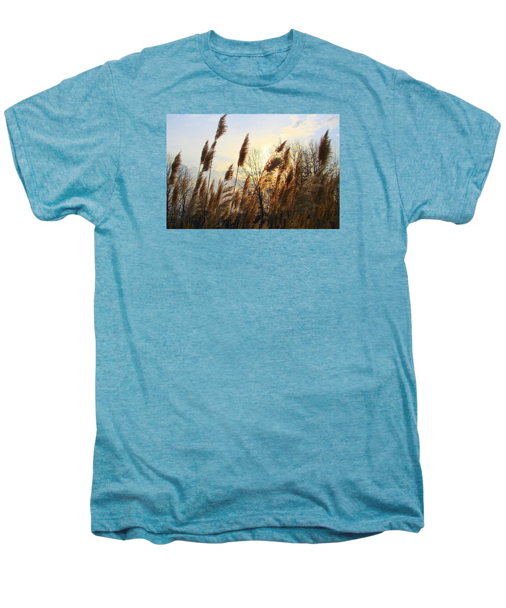 Pampasgrass Men's Premium T-Shirt featuring the photograph Amber Waves Of Pampas Grass by J R Seymour