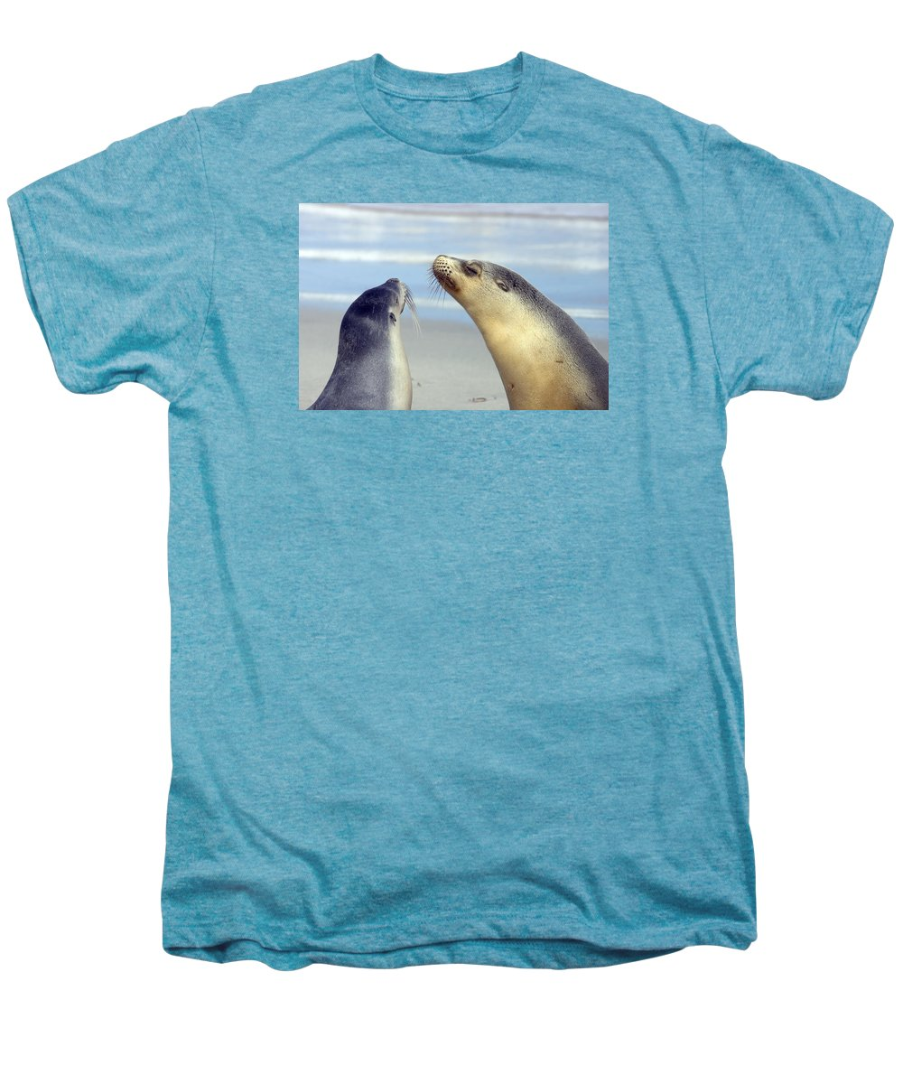 Sea Lion Men's Premium T-Shirt featuring the photograph Backtalk by Mike Dawson