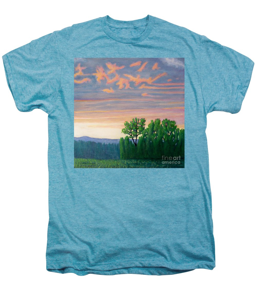 Landscape Men's Premium T-Shirt featuring the painting Balsa Road by Brian Commerford