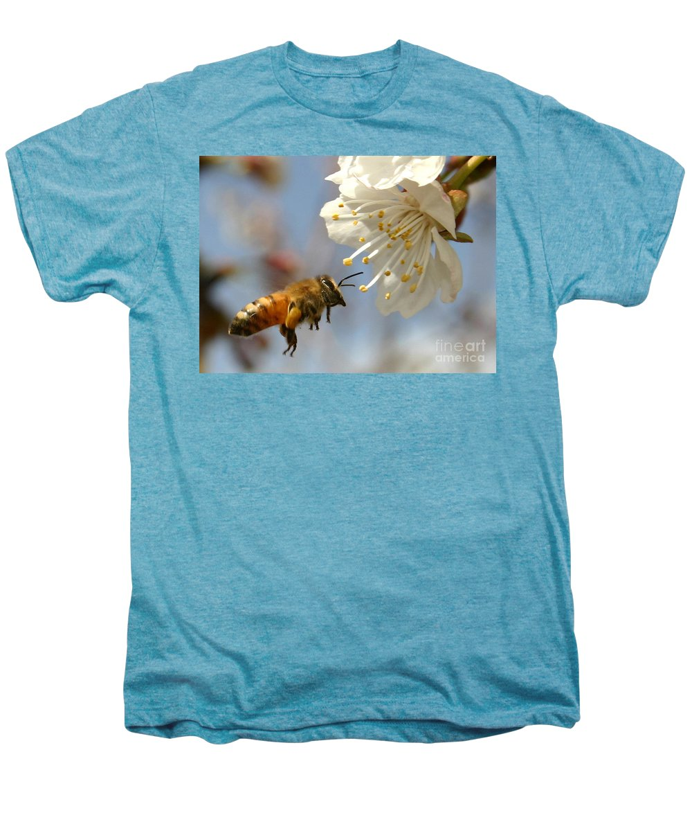 Honey Men's Premium T-Shirt featuring the photograph Bee And A Blossom by Danny Yanai
