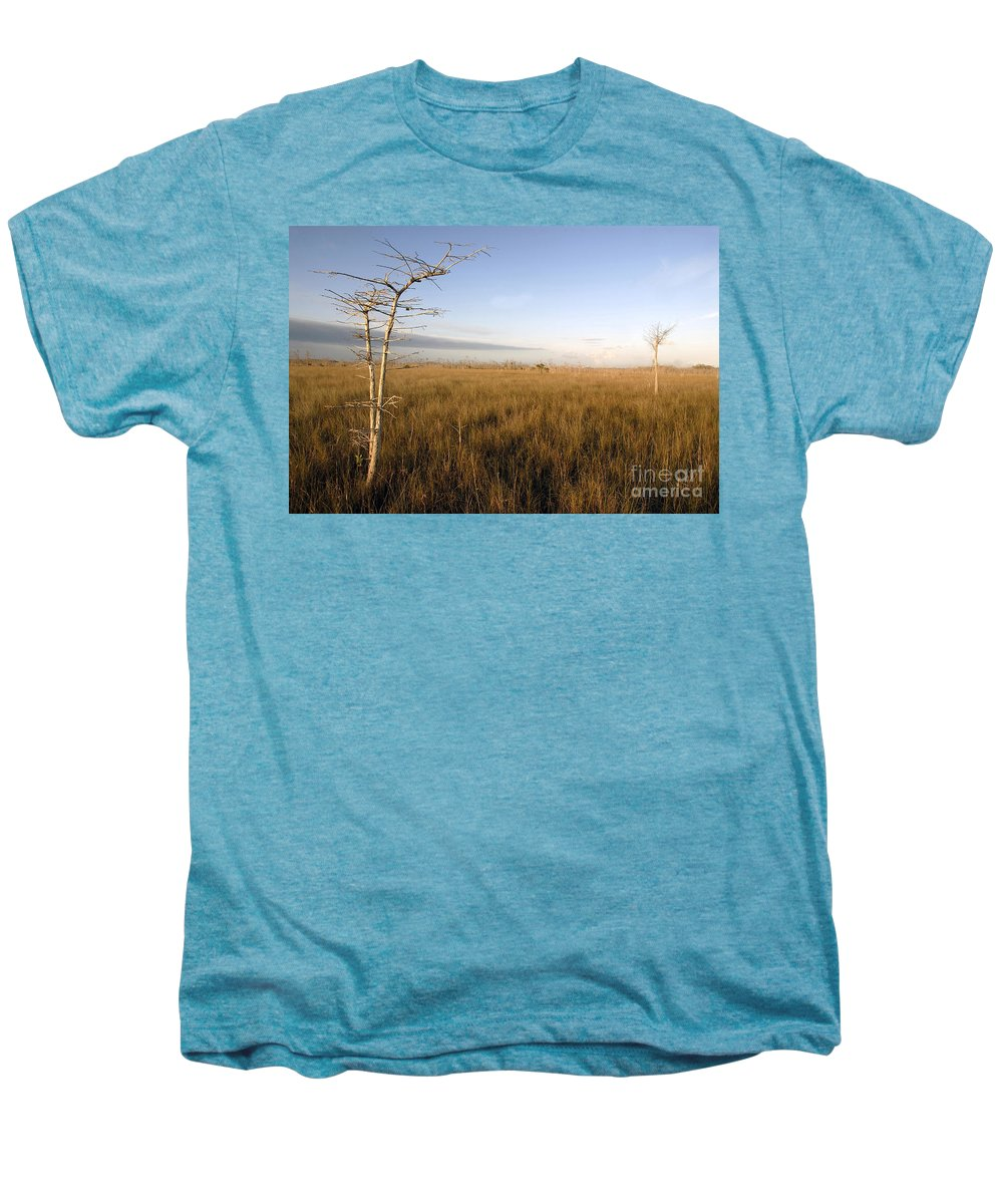 Bald Cypress Men's Premium T-Shirt featuring the photograph Big Cypress by David Lee Thompson