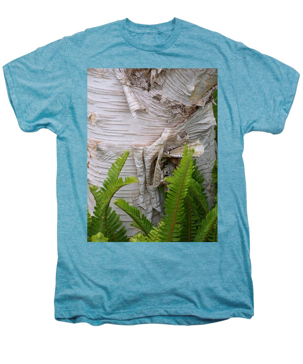 Tree Men's Premium T-Shirt featuring the photograph Birch Fern by Gale Cochran-Smith