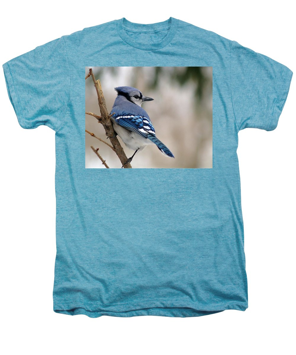 Blue Jay Men's Premium T-Shirt featuring the photograph Blue Jay by Gaby Swanson