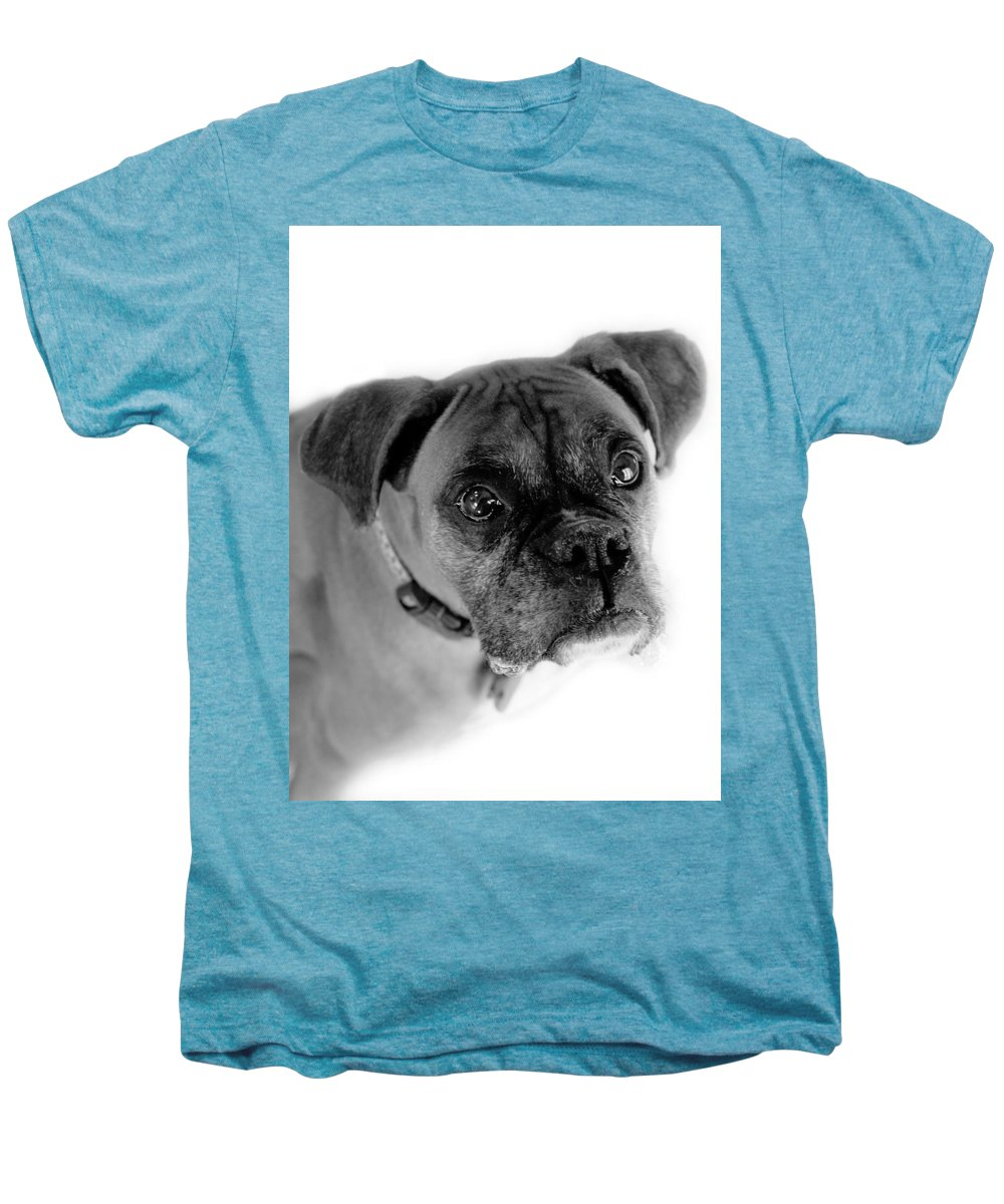 Boxer Men's Premium T-Shirt featuring the photograph Boxer Dog by Marilyn Hunt