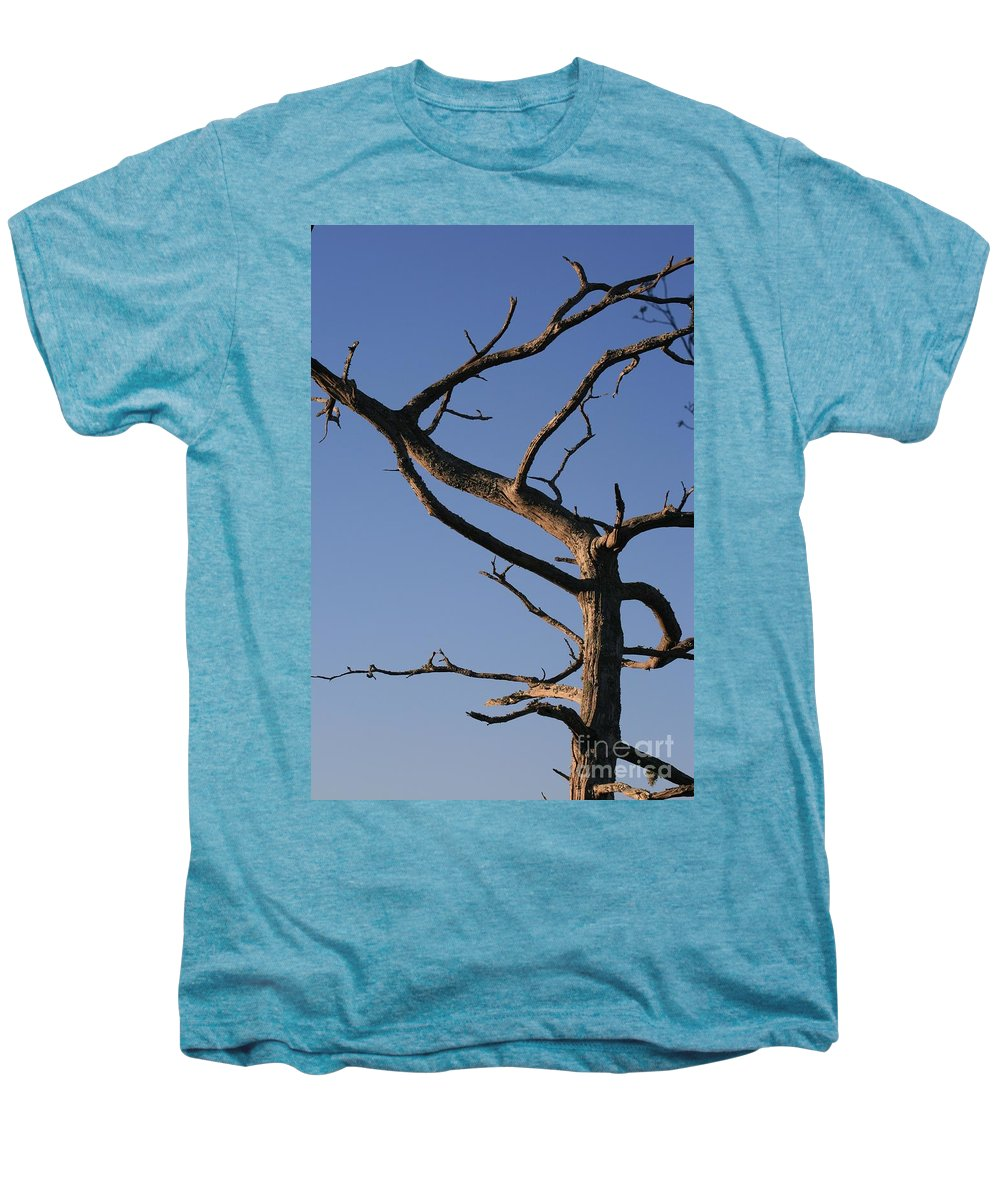 Tree Men's Premium T-Shirt featuring the photograph Gnarly Tree by Nadine Rippelmeyer