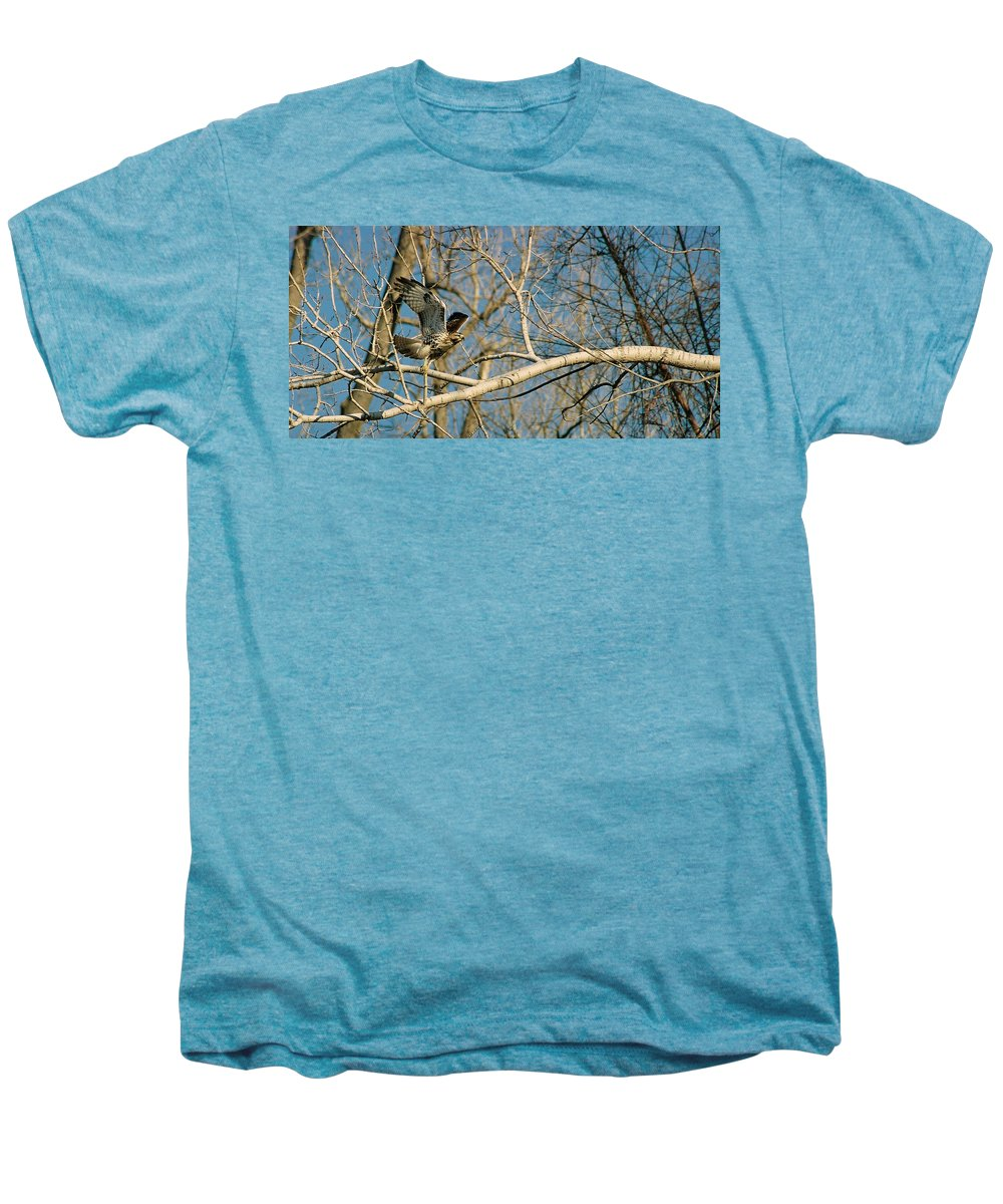 Hawk Men's Premium T-Shirt featuring the photograph Hawk by Steve Karol