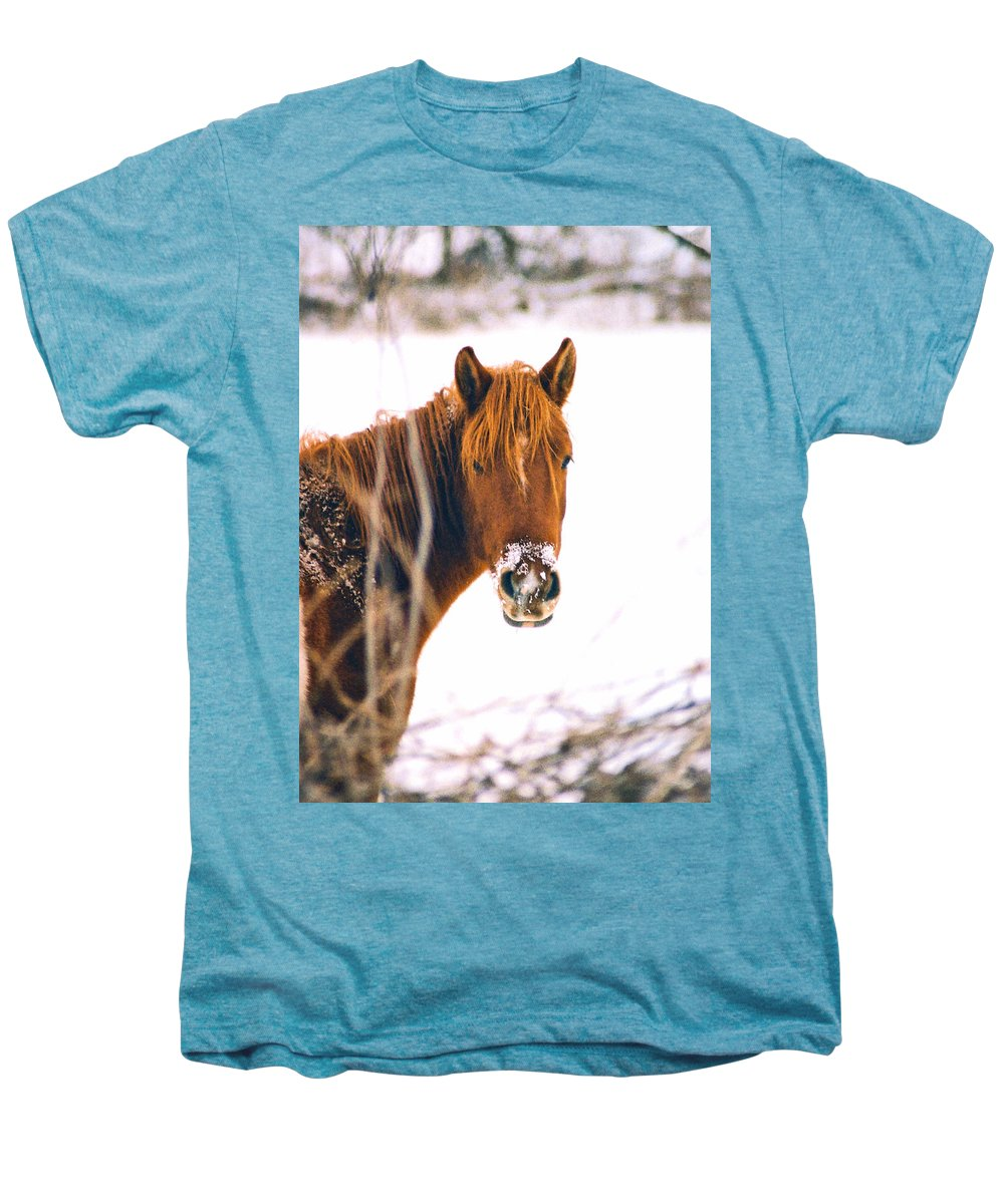 Horse Men's Premium T-Shirt featuring the photograph Horse In Winter by Steve Karol